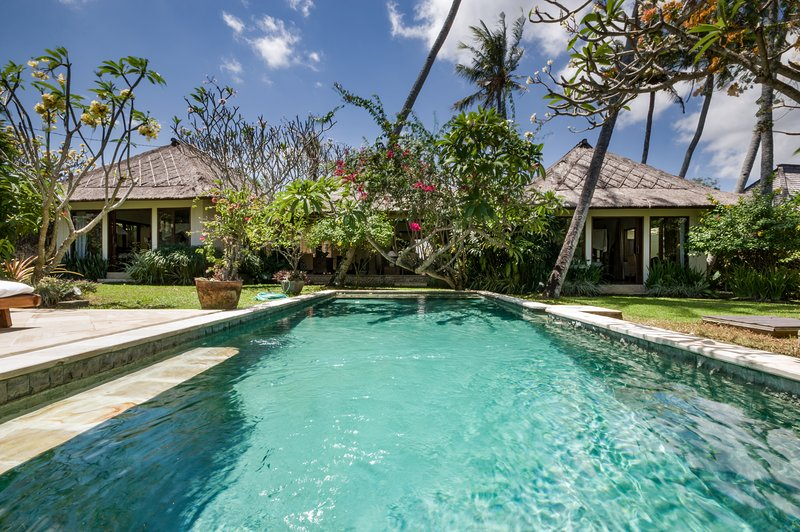 Villa Kelapa has 9 palm trees on its property - Spacious, Traditional, Modern Canggu Villa w Pool - Canggu - rentals