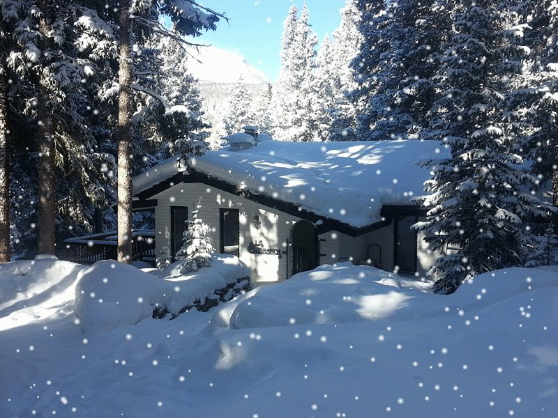 Our Cozy Mountain Cabin .. a Winter Wonderland - Mtn Cottage = Privacy, Views, Hot Tub and MORE!!! - Breckenridge - rentals