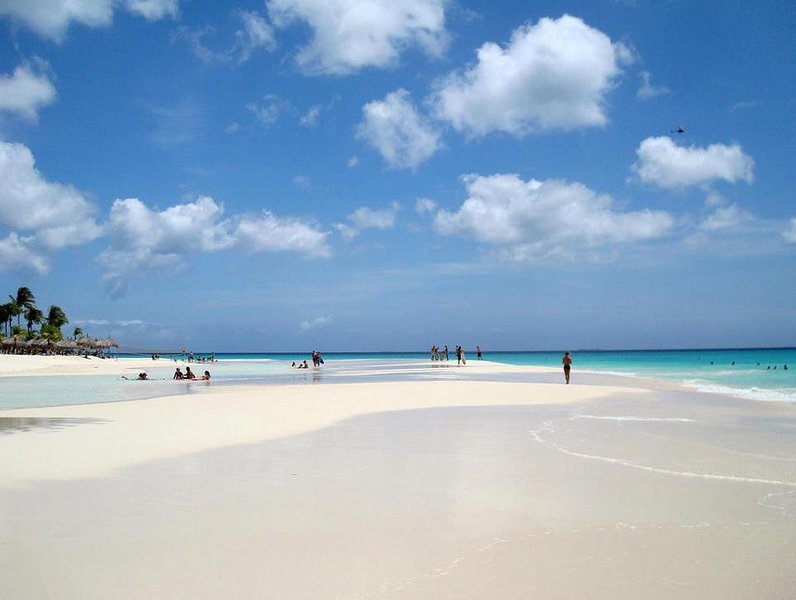 Eagle Beach!.. Rated best beach in the caribbean by USA Today.  Not to shabby :) - 1 Bedroom Suites at Eagle Beach (Tropicana Aruba Resort & Casino) - Oranjestad - rentals