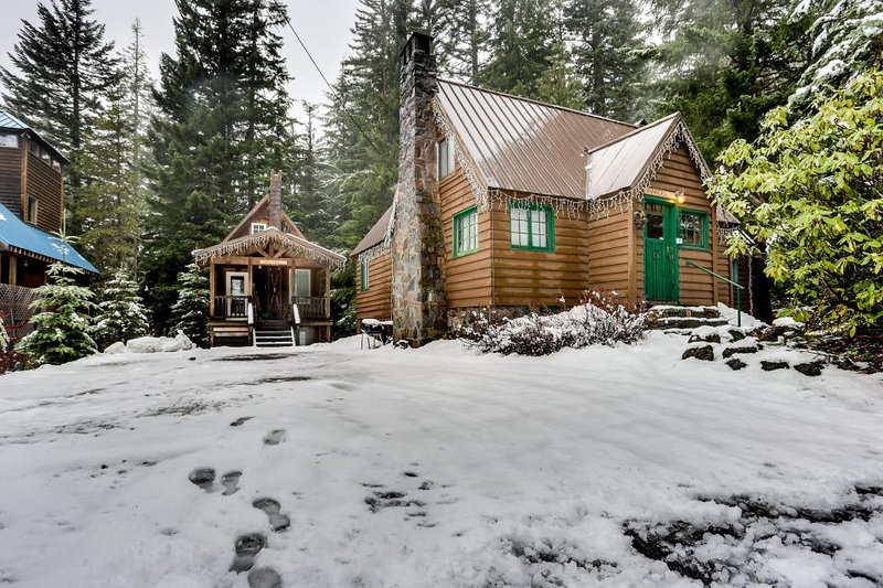 Intimate fairytale cabin w/wood stove, near ski resorts - dogs OK! - Image 1 - Government Camp - rentals