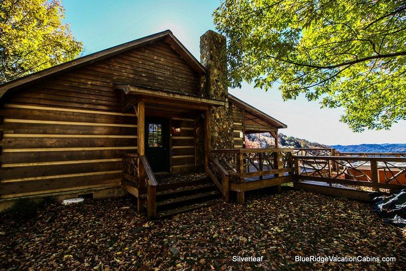 Silverleaf - Image 1 - Zionville - rentals