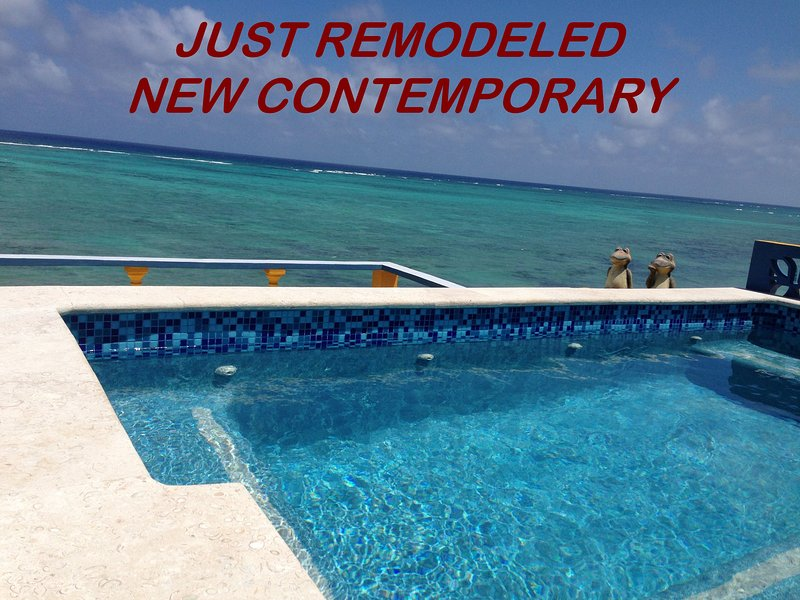 Roof Top Pool for 14 People & Roof Top Living Room, Bar & Bath. 6,000 Sq. Ft  Villa. INCLUDES COOK! - LOW RATES LUXURY VILLA Includes Cook, 2 Pools, WiFi, More - Tulum - rentals
