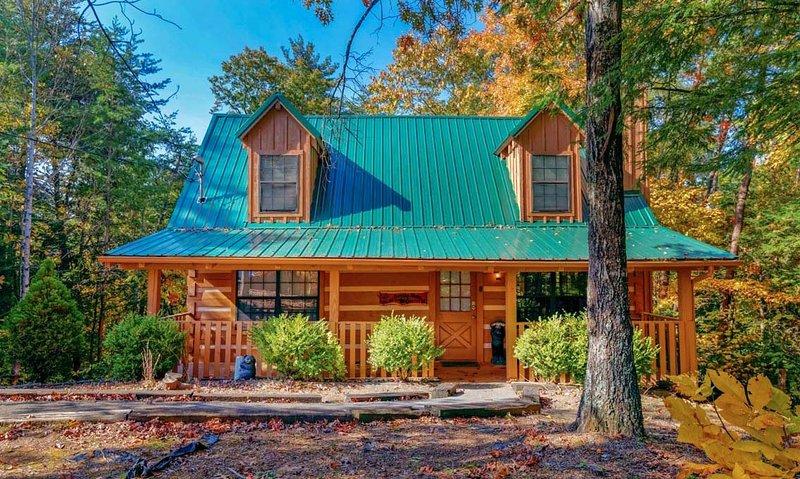 Smoky Bears Cabin - Image 1 - Gatlinburg - rentals
