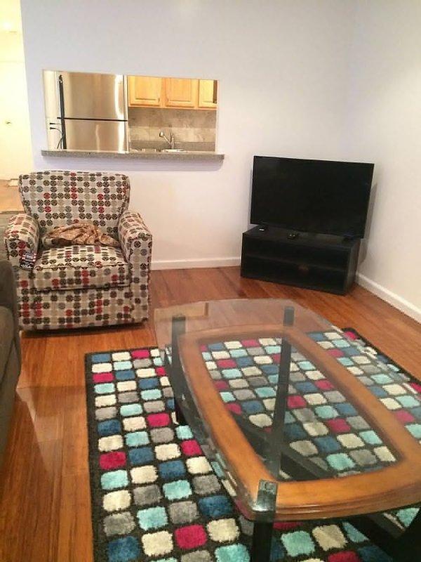 BEAUTIFUL AND MODERN 2 BEDROOM, 1 BATHROOM APARTMENT - Image 1 - New York - rentals