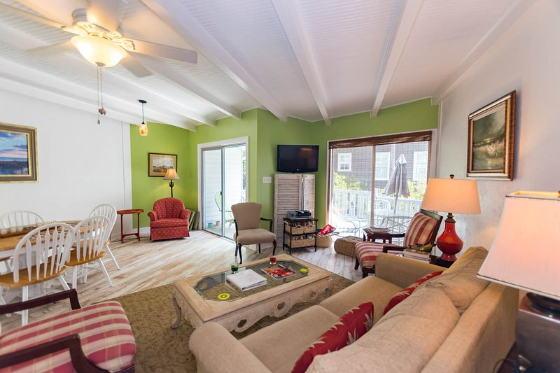 Stunning East Beach Villa, steps to the beach! - Image 1 - Saint Simons Island - rentals