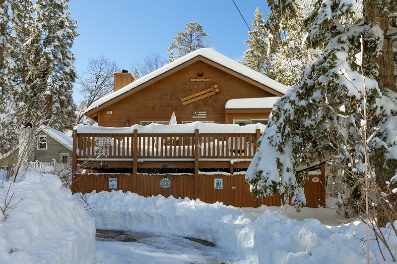 Modern Beauty National Forest. Spa, Wi-fi, Hiking from Backyard. Walk to Village - Image 1 - Big Bear Lake - rentals