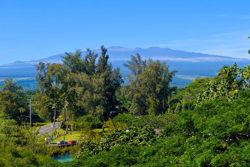 Great views from unit 501 at popular Maunaloa Shores in Keaukaha, Hilo's beach park area - Maunaloa Shores 501 - Hilo - rentals