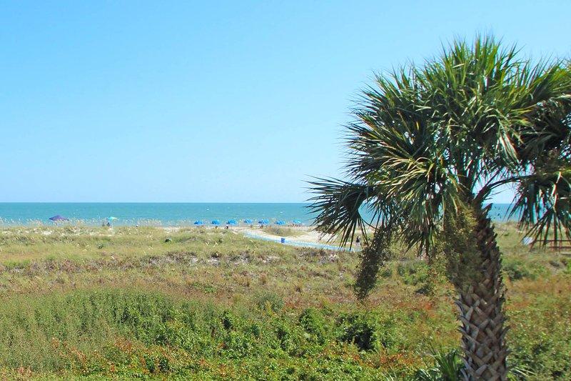 Island Club, 2201 - Image 1 - Hilton Head - rentals