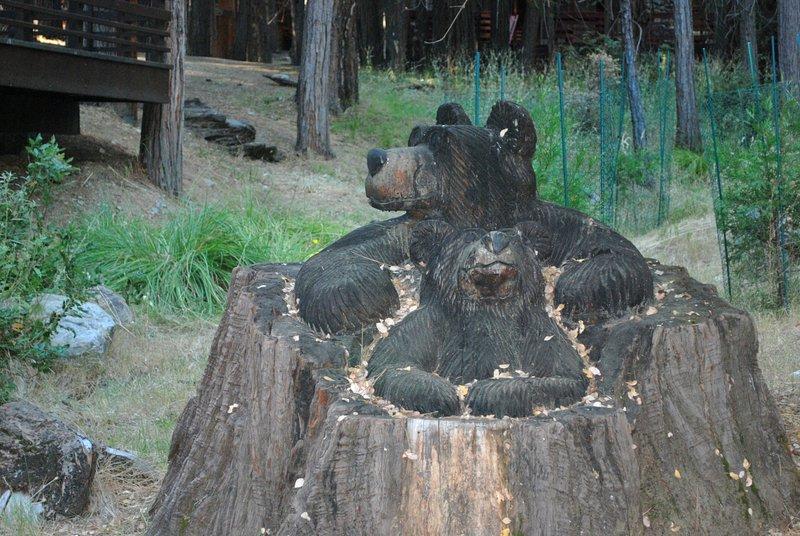 Bear to greet you! - (11) Shangri la-de-da - Yosemite National Park - rentals