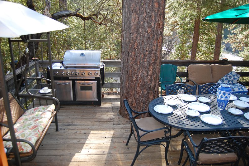 Covered swing, large gas grill, picnic table for 6, and the south fork of the Merced River too! - (10N) Black Oak Lodge - Wawona - rentals