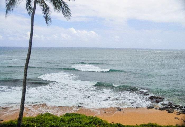 Wailua Bay  1 Bedroom Ocean Front 310 - Image 1 - Kapaa - rentals