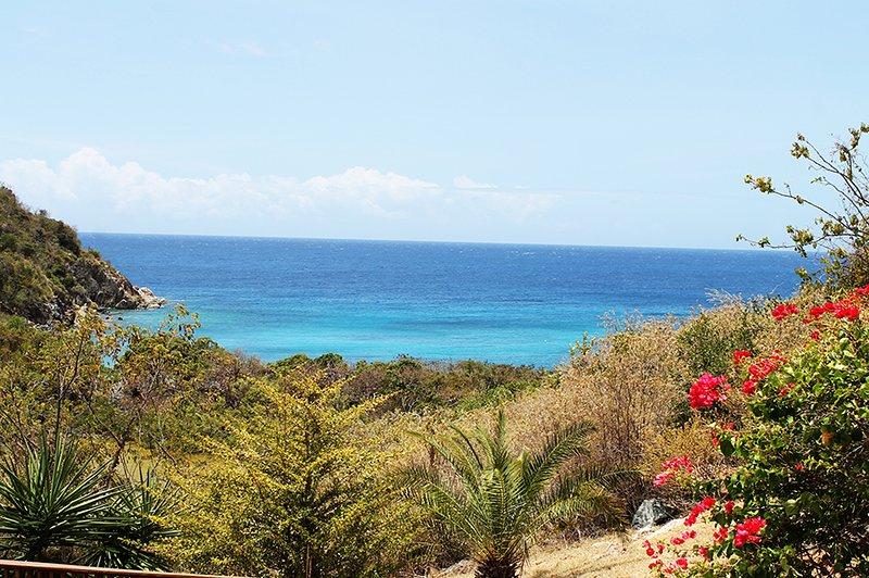 La Sirena View of the Caribbean Sea - La Sirena Villa - East End - rentals