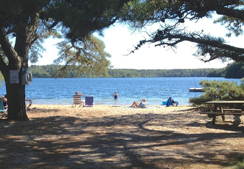 3-5 minute walk to this picturesque beach on Sheep's Pond - Walk to Sheep's Pond, Brewster, sleeps 10--010-B - Brewster - rentals