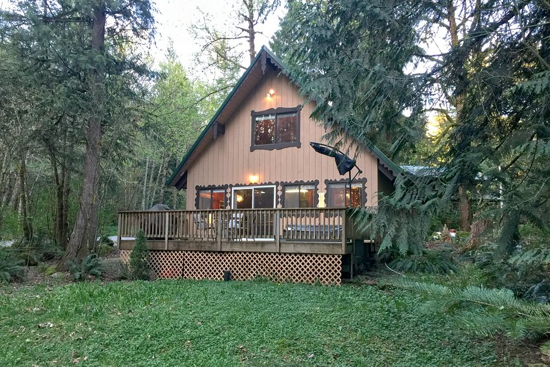 Front of house - 22GS Pet Friendly Cabin with a Hot Tub, WiFi and Netflix - Glacier - rentals