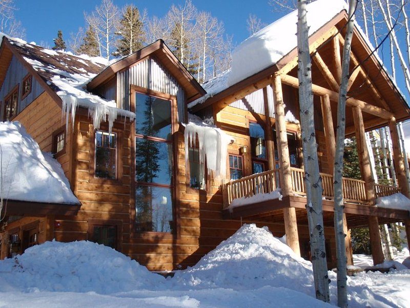 Spectacular in the Winter - Durango Mountain Home - Spectacular - Durango - rentals