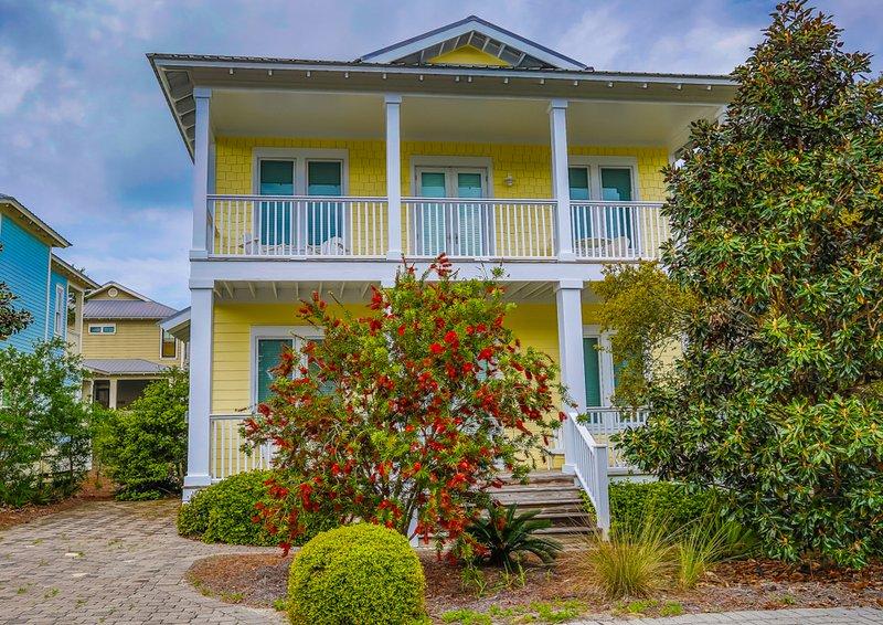 gorgeous house front view - CAPITAL GAINS - Santa Rosa Beach - rentals