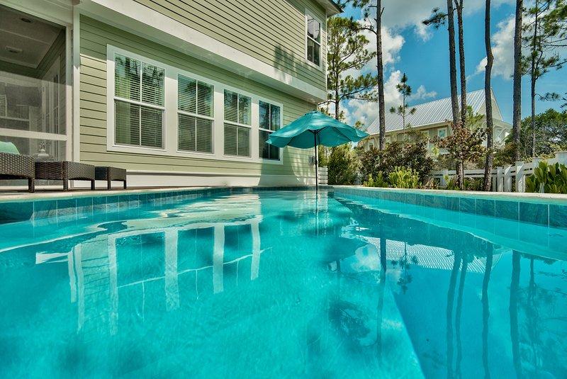 pool view - Endless Grace - Santa Rosa Beach - rentals