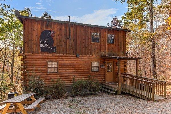 Shy Bear - SHY BEAR - Pigeon Forge - rentals