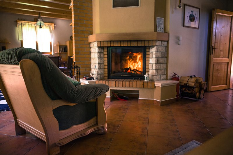 cozy atmosphere by the fireplace - Beautiful Chalet Bear WILI HUNTER - Donovaly - rentals
