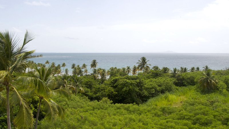 Magnificent view from the terrace. - Steps to the Beach, Fantastic View of Caribbean - Humacao - rentals