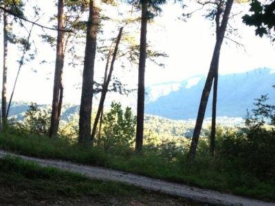 Cherokee Mountain View - Cherokee - Townsend - rentals