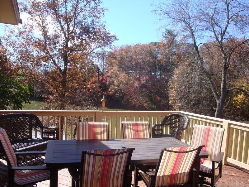 Lakeway Lodge - Image 1 - Mills River - rentals
