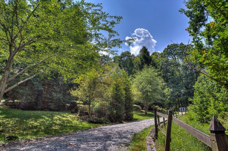 Deer Lodge - Image 1 - Cedar Mountain - rentals