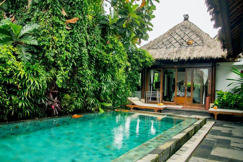 Rustic Luxury: Villa Ananda Sri - Image 1 - Ubud - rentals