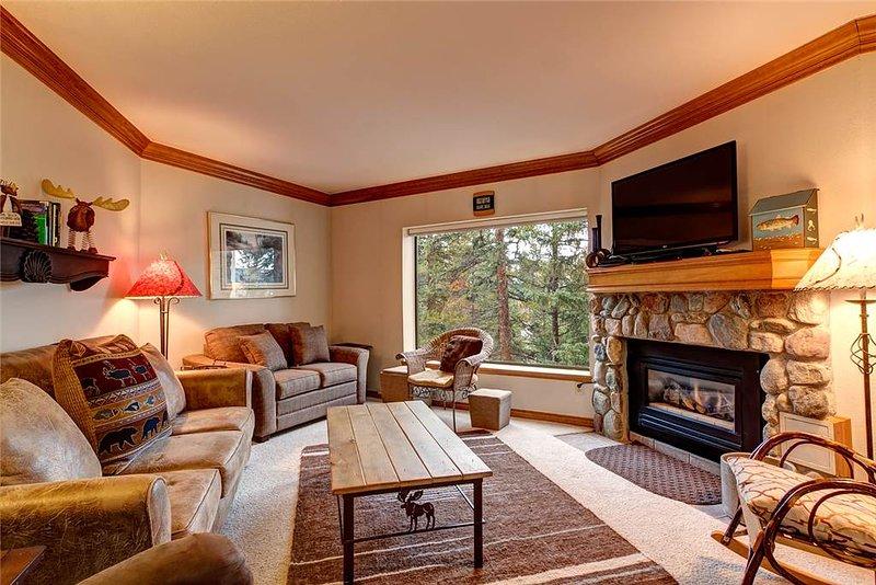 Powderhorn A201 - Image 1 - Breckenridge - rentals