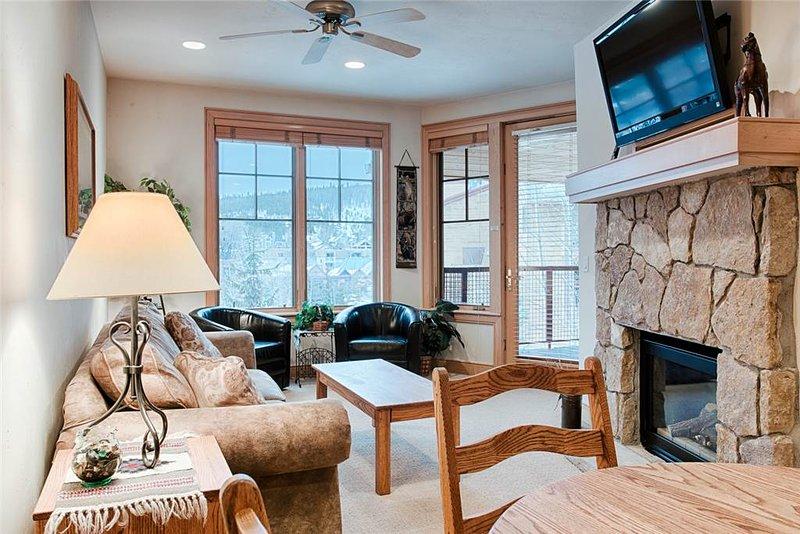 Park Avenue Lofts 207 - Image 1 - Breckenridge - rentals