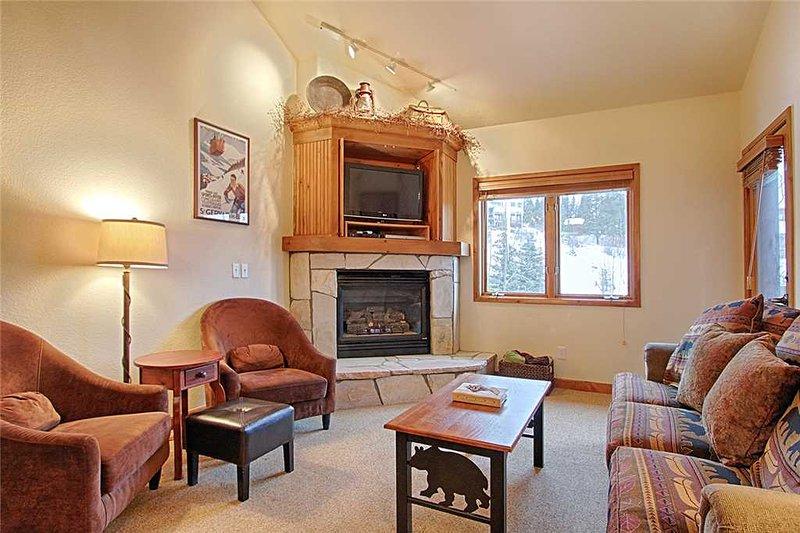 Riverbend Lodge 217 - Image 1 - Breckenridge - rentals