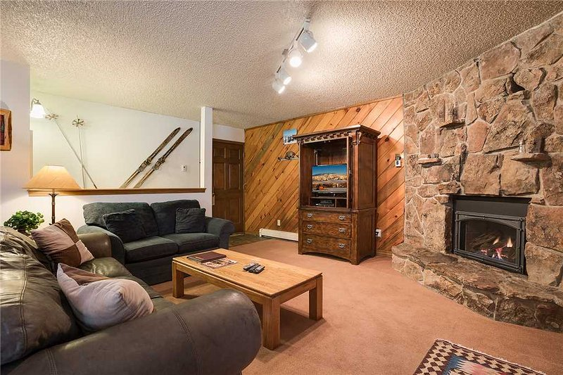 Phoenix at Steamboat - P219 - Image 1 - Steamboat Springs - rentals