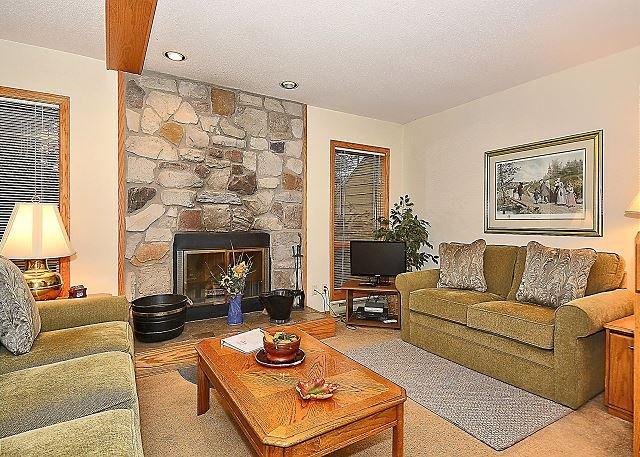 Living Room - Roomy 3 bedroom condo perfect for your next Canaan Valley, WV getaway! - Davis - rentals