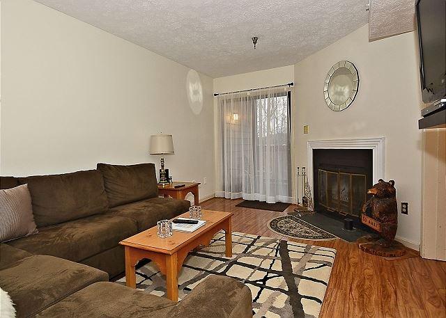 Living Room - Cozy1 bedroom Beaver Lilly located between Davis and Canaan Valley - Davis - rentals
