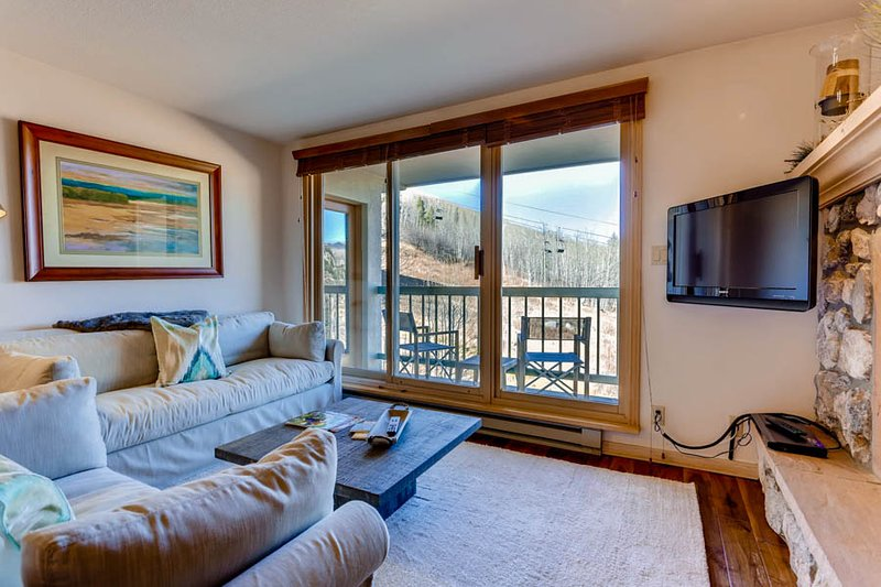 Borders Lodge - Lower 403 - Image 1 - Beaver Creek - rentals