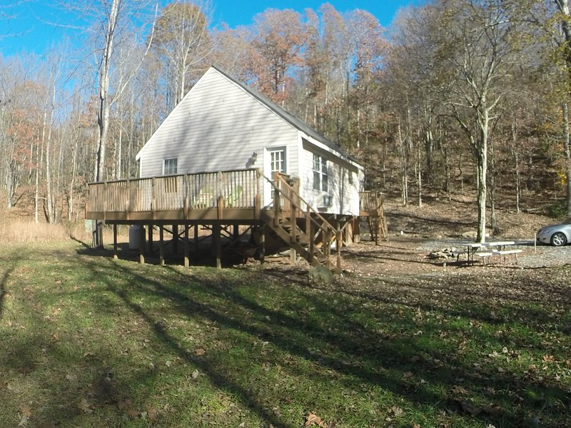 Our Private Wooded Cabin - Image 1 - Moneta - rentals