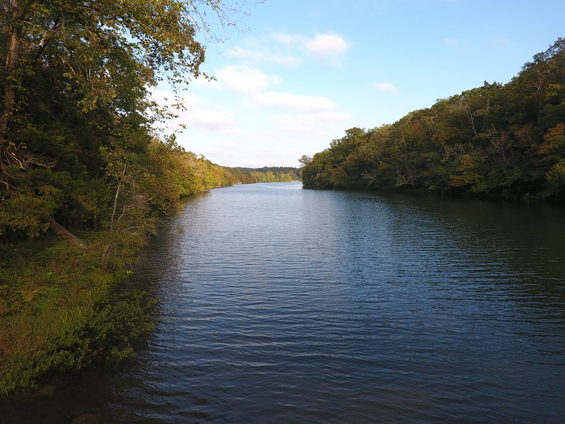 View of the cove! - Best Lakefront Lodge in Branson-WiFi, Fishing... - Branson - rentals