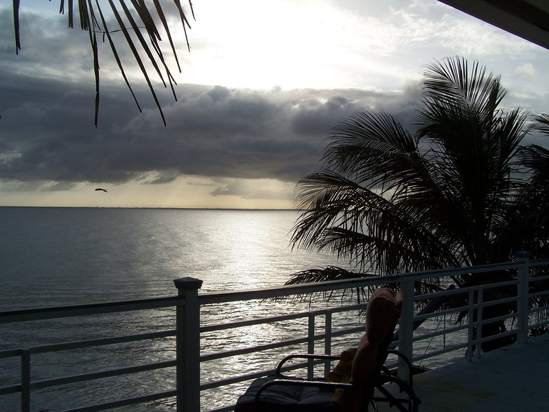 Picture from the beachfront deck - BEACHFRONT HOME, JANUARY SPECIAL, DOGS STAY FREE, STUNNING VIEWS, WALKING BEACH - Anna Maria - rentals