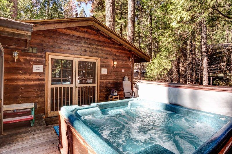 Hot tub on back deck! - (41A) Cedar Chalet - Wawona - rentals