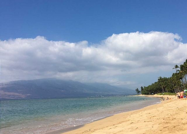 Waiohuli Beach Hale is situated on a white sandy beach. - Waiohuli Beach Hale #A-201 Remodeled 2/2 Oceanfront Condo Sleeps 4 - Kihei - rentals
