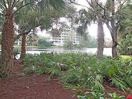 View - Wild Pines - Bonita Bay E-105 - Bonita Springs - rentals