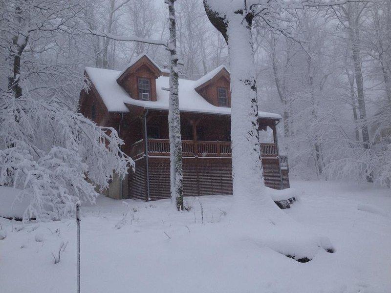 The Bear Dance Cabin at Wintergreen - Image 1 - Wintergreen - rentals