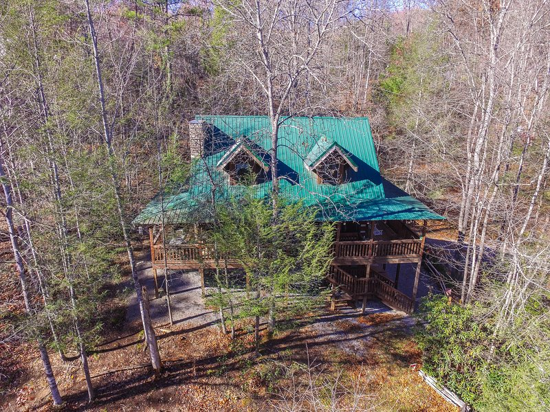 Sassafras Lodge: Hawk's view! - SASSAFRAS LODGE-Quiet  Mountain Setting, Pets OK - Gatlinburg - rentals