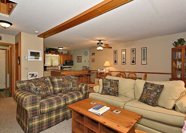 Living Room - Truly an Idyllic Mountain Getaway in the heart of ski country, Davis, WV - Davis - rentals