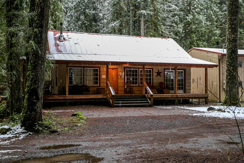 Charming dog-friendly cabin w/private hot tub, deck & bikes! Walk to the river! - Image 1 - Rhododendron - rentals