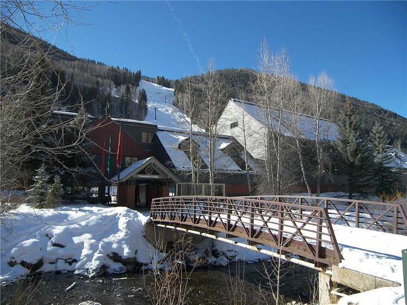 Cimarron Lodge #20 - Image 1 - Telluride - rentals