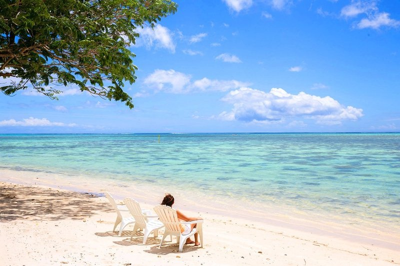 MOOREA - Fare Tiki Dream - Image 1 - Haapiti - rentals