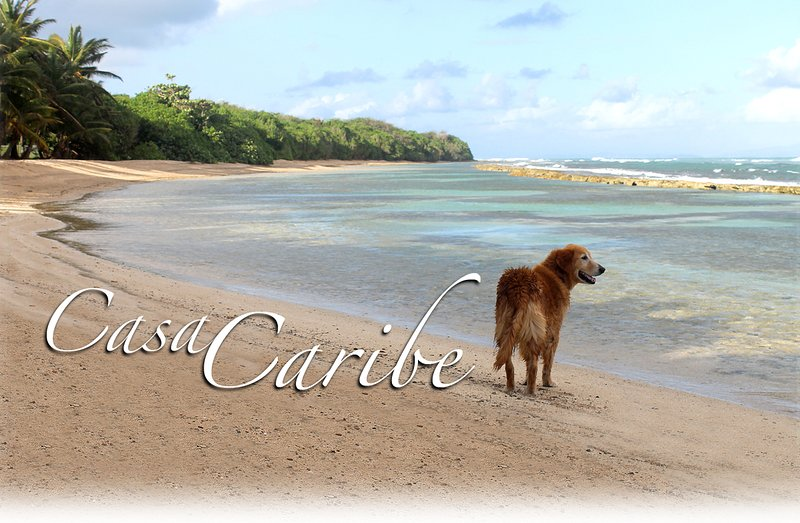 Welcome to Paradise. - Casa de Caribe-only 5 min drive to North side secluded beaches. - Isla de Vieques - rentals