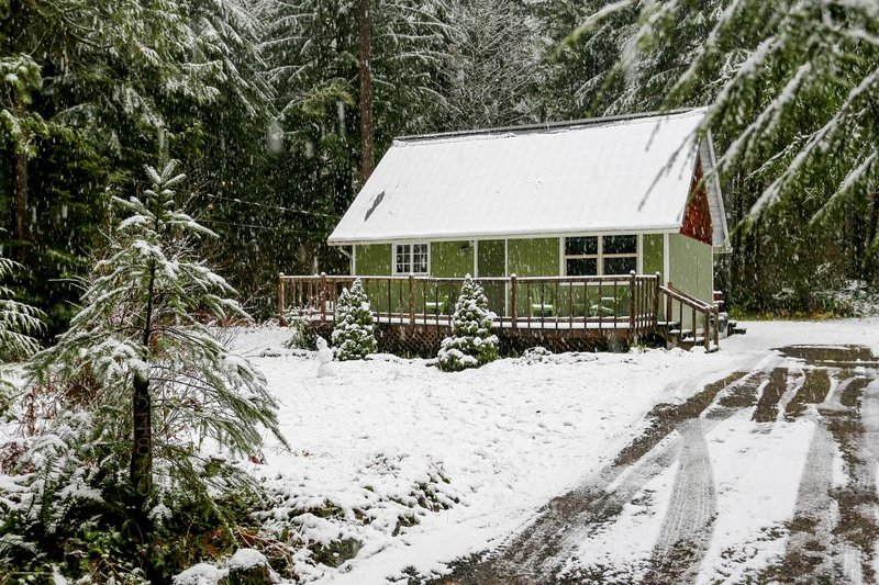 Lovely dog-friendly mountain cabin w/private hot tub! Just 400 feet to river! - Image 1 - Rhododendron - rentals