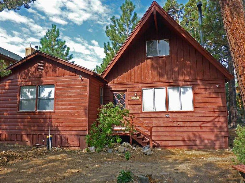 Big Bear Cabin 4U - Image 1 - Big Bear Area - rentals